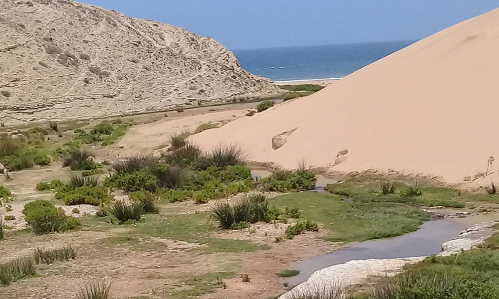 Sidi Mbark