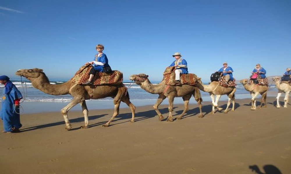 8 days essaouira atlantic coast trekking & camel trek