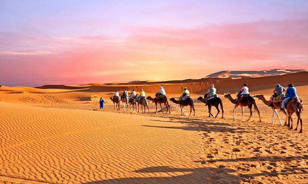 moroccan desert camel trek
