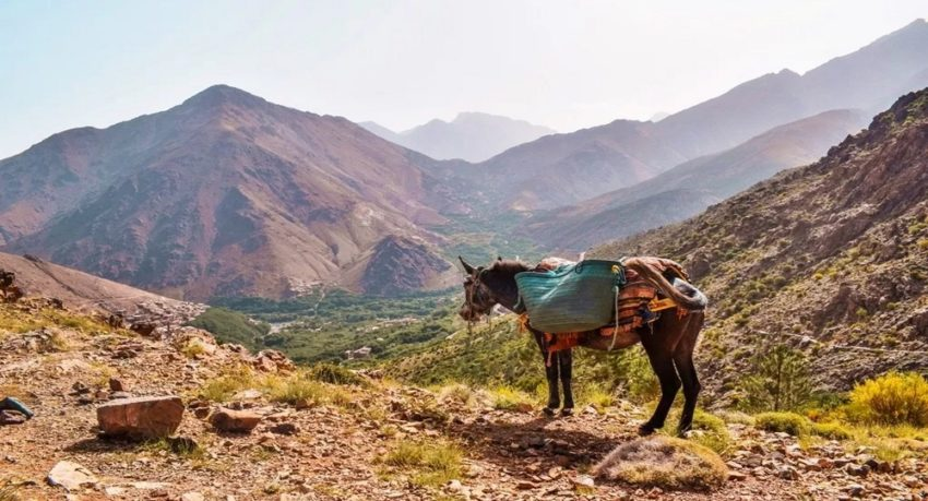 Hiking Morocco