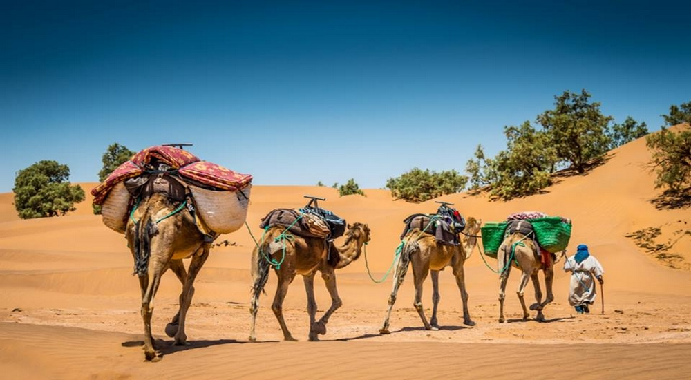 Hiking in the Morocco desert